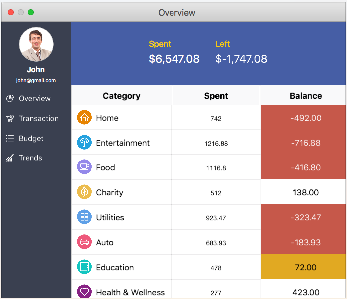 Displays the overview of expense details using datagrid