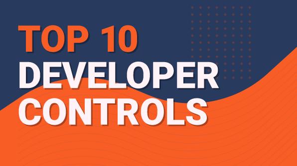 72 DPI_Top 10 Developer Controls-01