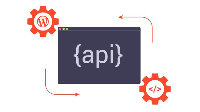 REST API for developers using WordPress