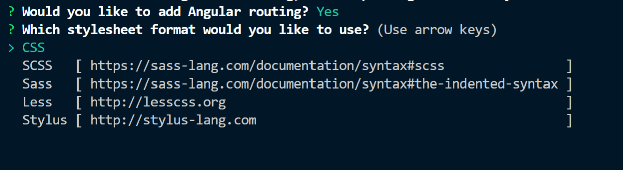 Questions asked by CLI while creating a new application