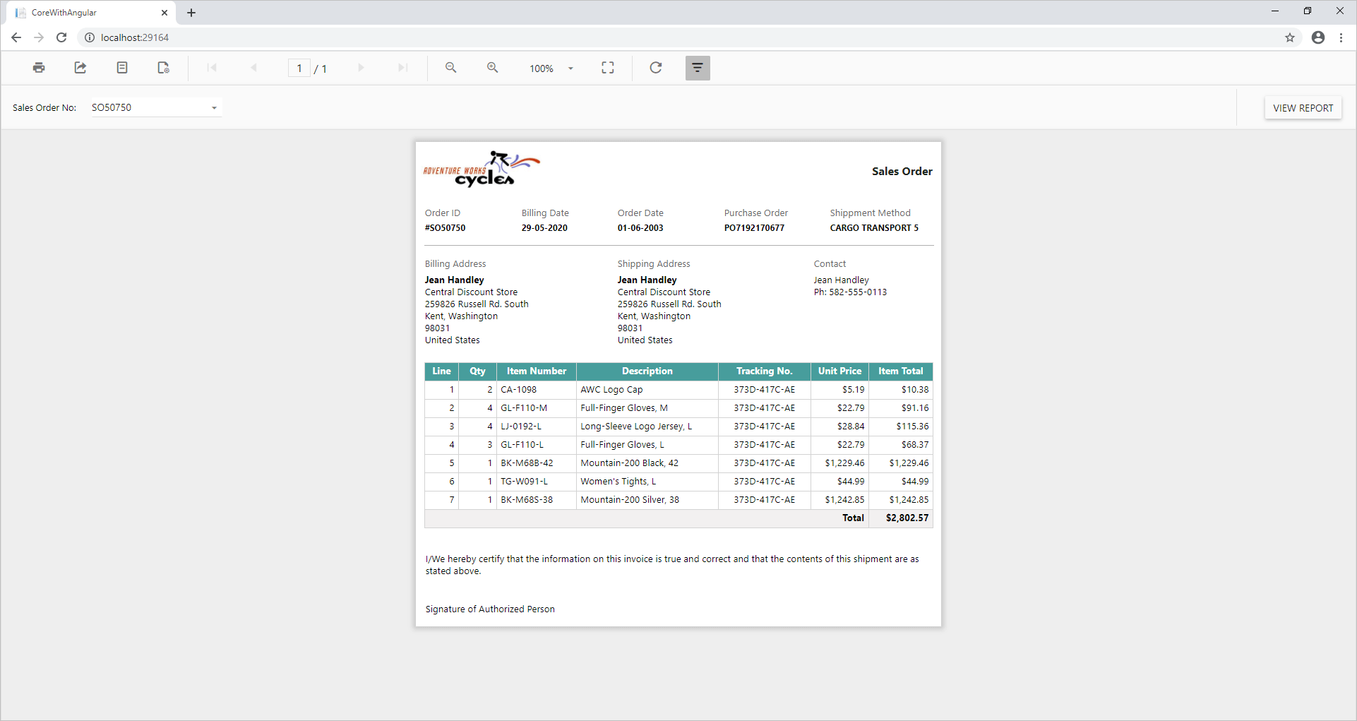 Sales Report in ASP.NET Core with Angular application
