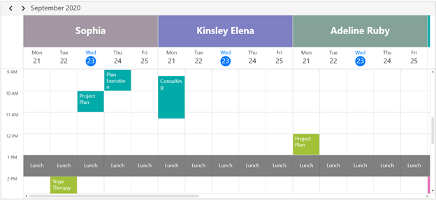 Special Time Region in WPF Scheduler Resource View