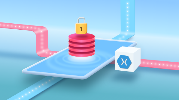 Protecting sensitive data in Xamarin Forms app