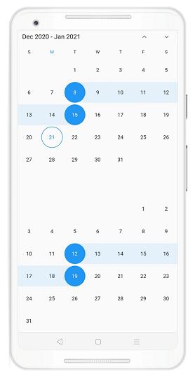 Vertical Picker Feature in Date Range Picker