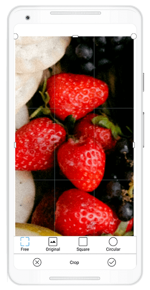 Zooming and cropping feature in Xamarin.Forms Image Editor