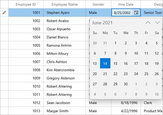 Displaying CalendarDatePicker Editor in WinUI DataGrid