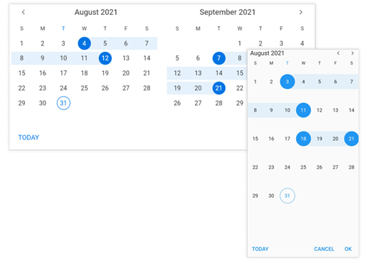 Flutter Date Range Picker with Today Button