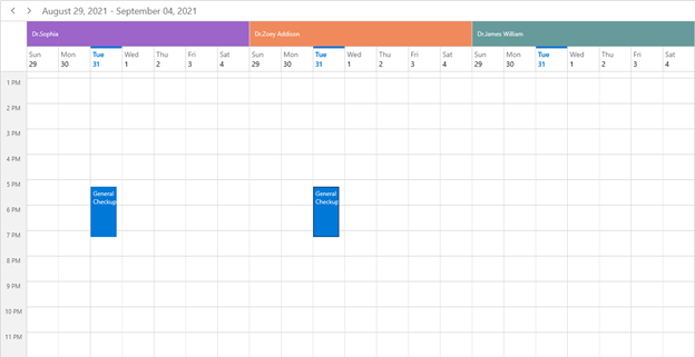 Scheduling Appointments to the Resources in WinUI Scheduler