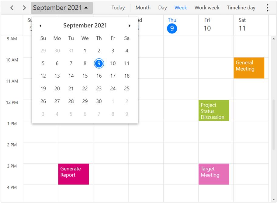 Date navigation using date picker in WPF Scheduler