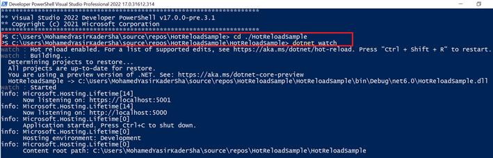 Developer PowerShell window