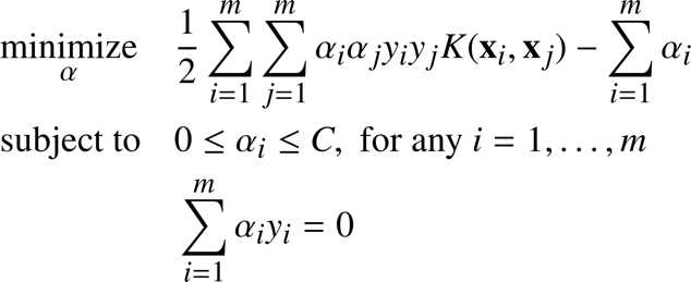 Ebook - Chapter 8 of Support Vector Machines