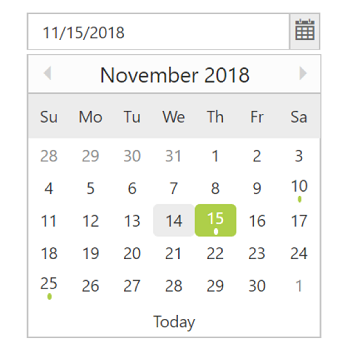 Custom DatePicker