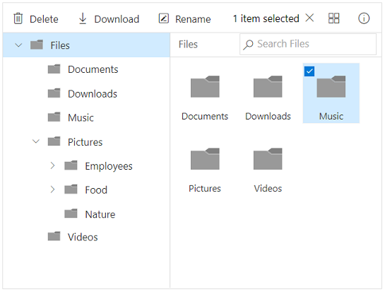 Content pane in File Manager
