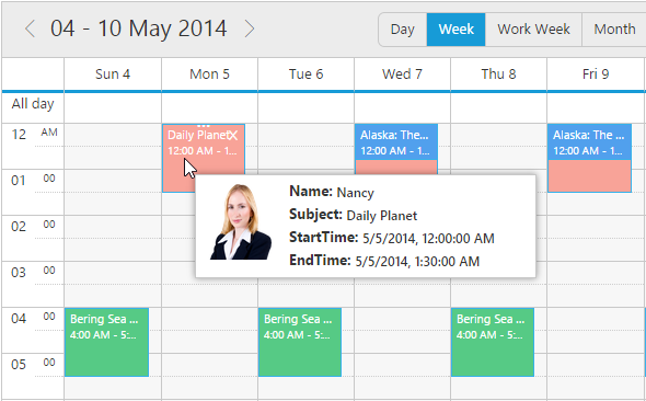 Appointments Tooltip Template in jQuery Scheduler/Event calendar