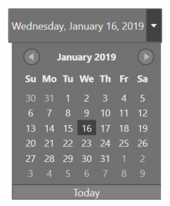 wpf datepicker in blend theme