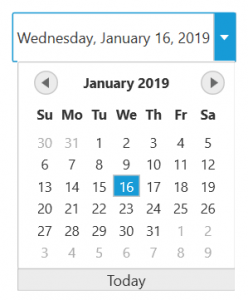 wpf datepicker in metro theme