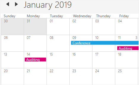 Appointment display in WPF Scheduler month view