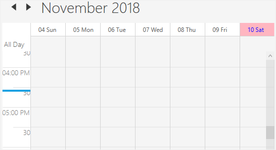 Current date and time customization in WPF Scheduler