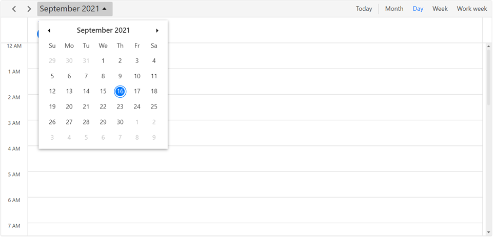 Day view in WPF Scheduler