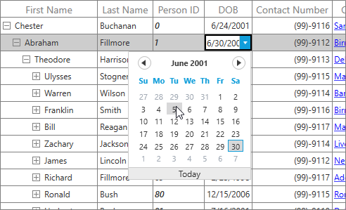 Editing with datepicker editor in WPF treegrid