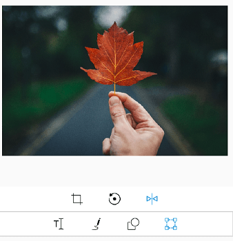Flip support for images.