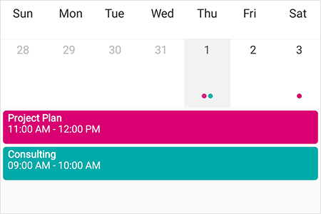 Inline view in Xamarin.Forms Scheduler month view